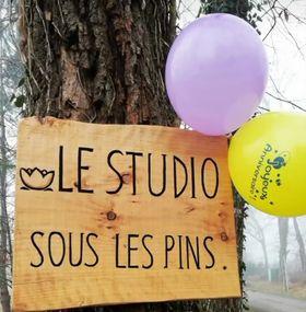 panneau le studio sous les pins avec des ballons